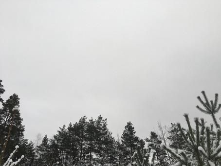 January - Day 7