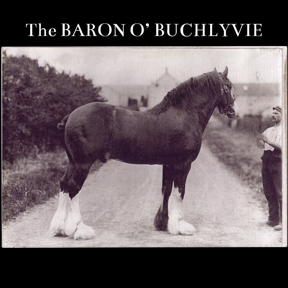 The Baron O'Buchlyvie