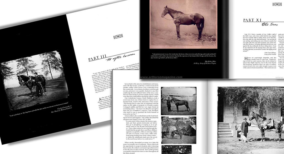 My Heart is Too Full to Say More: The Horse in the Civil War, Book