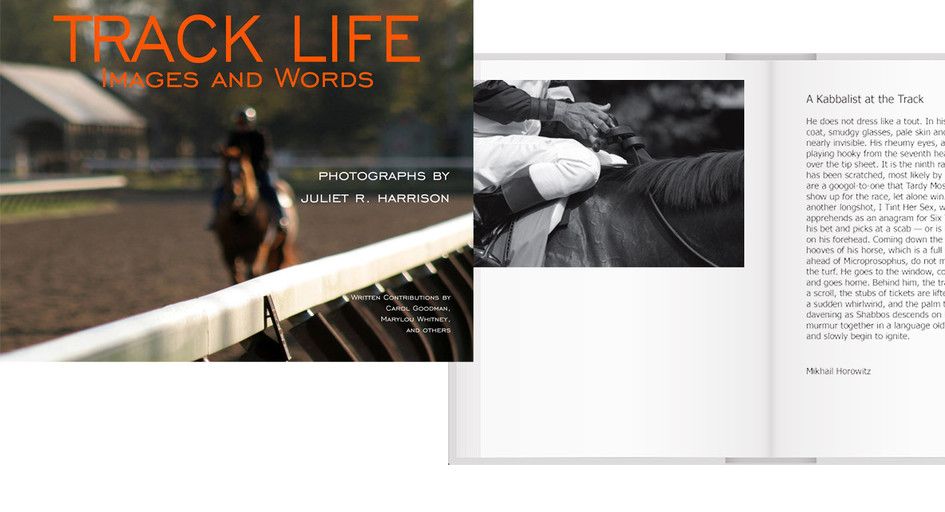 Track Life book by Juliet Harrison