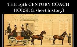 History of Coach horses