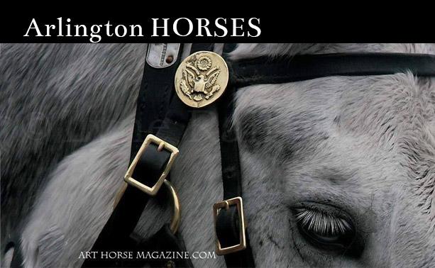 Horses of Arlington