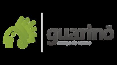 GUARINO_1.png