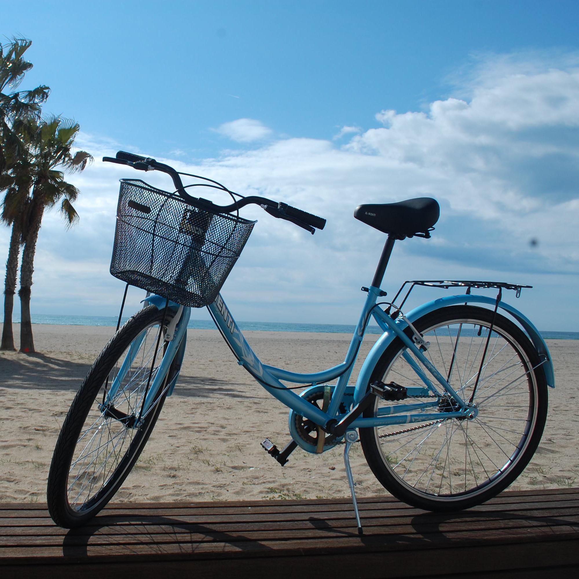 Bicicletas Paseo