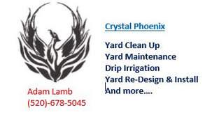 Crystal Phoenix - Adam Lamb and team