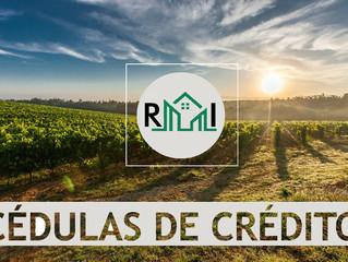 Cédula de crédito rural e garantia de terceiros