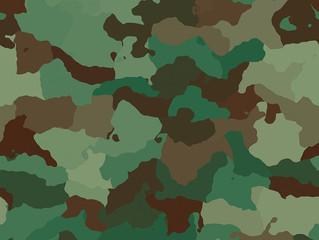 STJ: Bens da Fundação Habitacional do Exército são impenhoráveis, decide Primeira Turma
