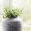 Thumbnail: House Doctor Rustic Concrete Vase