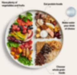 Canadian food guide Jan 2019.png