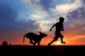 Dog running with boy
