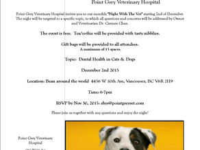 Spend a night with the Vet