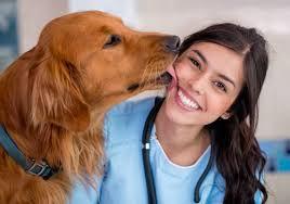 Registered Animal Health Technologists