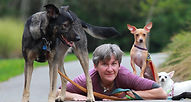 best buddies, dog sitting, dog walking, vancouver dog sitting