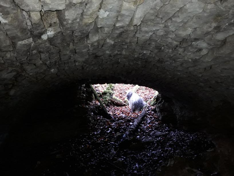 20201124_Cave des Pertuis Entrée