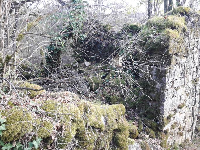 Ruine intérieure du moulin du haut