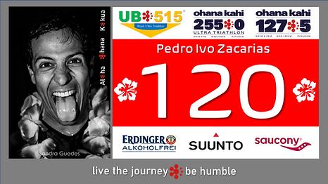 Pedro Zacarias.png
