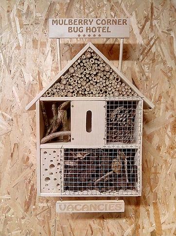 Handmade Wooden Bug Box