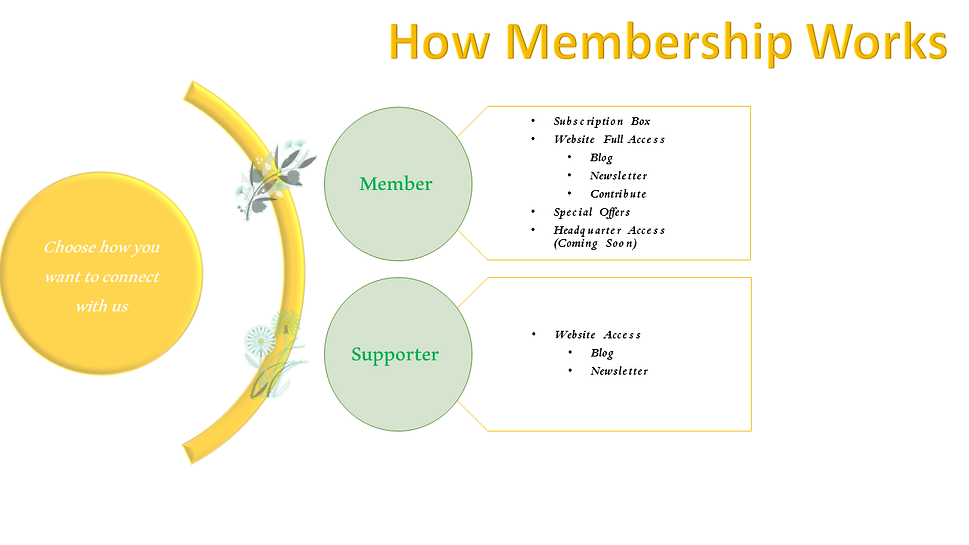 How Membership Works.png