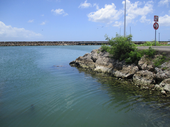 3_pimage pollution portuaire (4).JPG