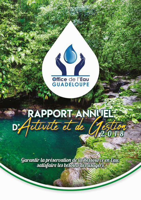RAPPORT ANNUEL DACTIVITES ET DE GESTION_