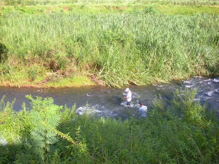 1_eau_rivieres (7).jpg