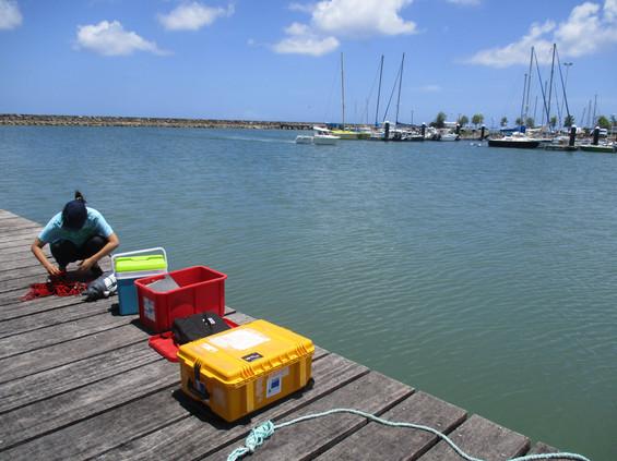 3_pimage pollution portuaire (3).JPG