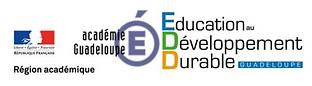 logo EDD.png