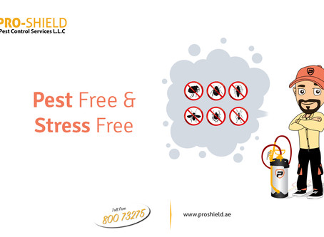 Pest Free and Stress Free