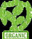 المبيدات العضوية