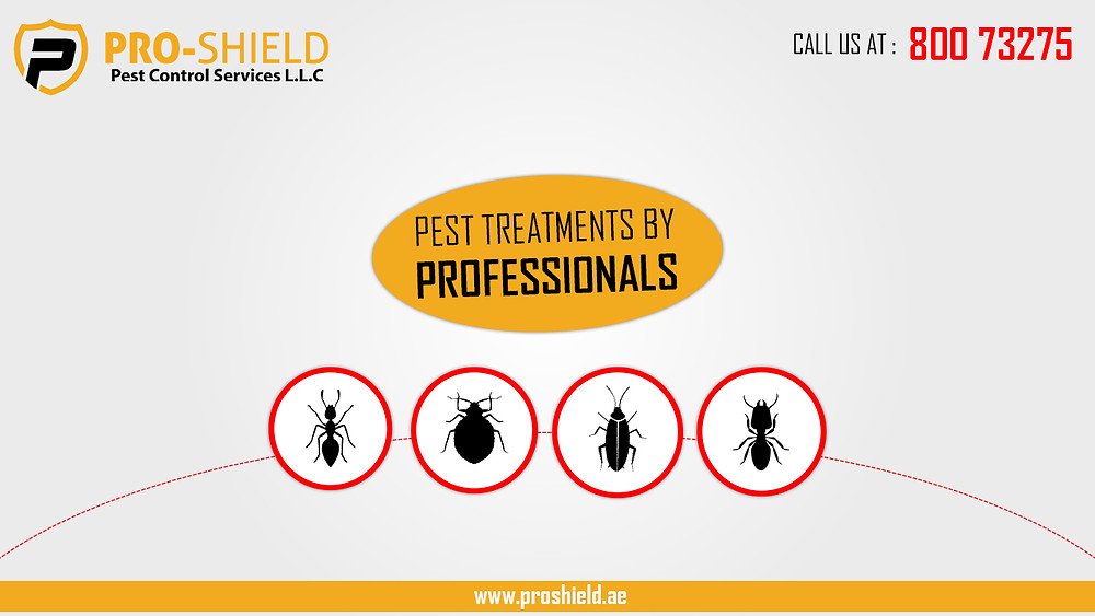 Certified Technicians for pest control