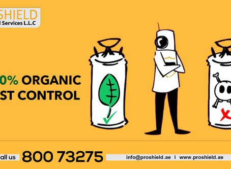 Organic and green pest control in dubai
