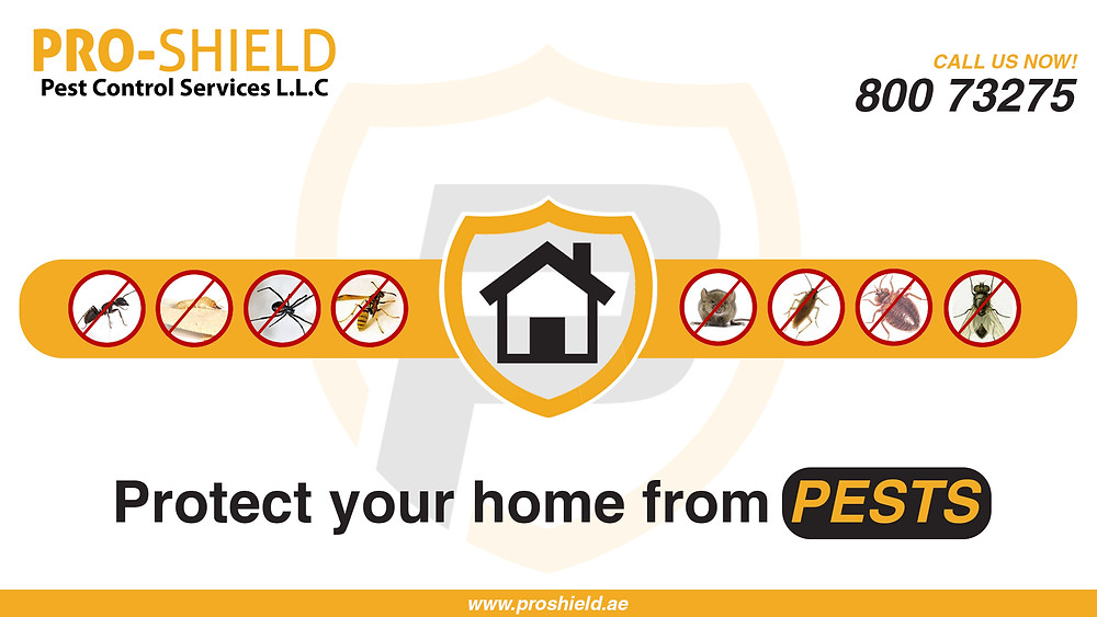 Pest Control for your home