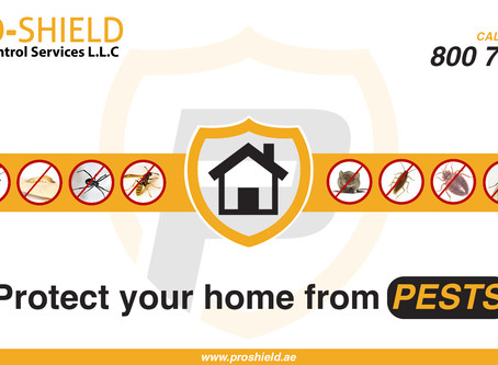 Protect your home and equipment from pests