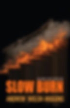 Slow Burn Cover.jpg