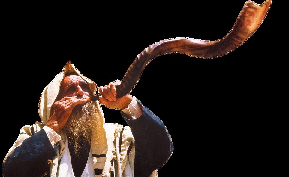 shofar1 reversed.png