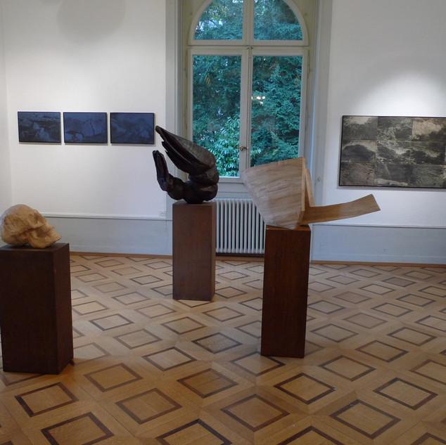 Exposition Villa Dutoit Genève