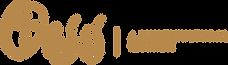 Iglesia Oasis Orlando Logo