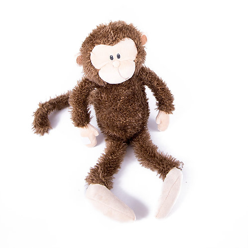 Hanging out Monkey