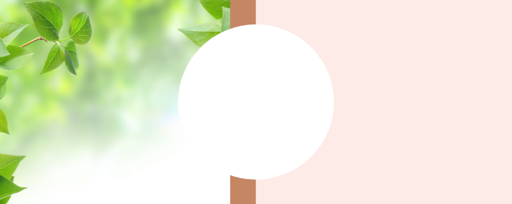 banner22222.png