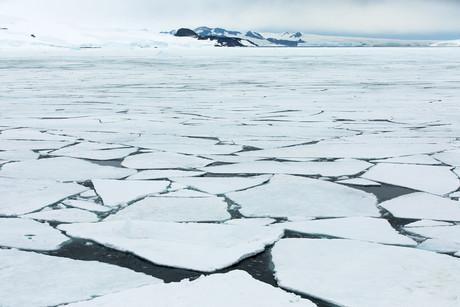 Cruising, Antarctica 12.jpg