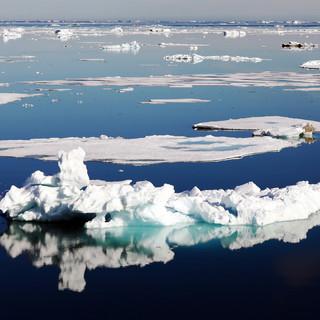 Brasvelbreen, Svalbard 20.jpg
