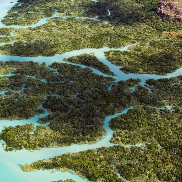 Hunter River, Kimberley 32.jpg