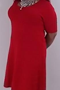 Knit Red Short Sleeve Zippered Sweater Dress