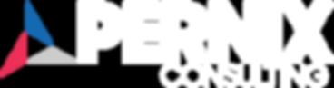 pernix_logo_footer.png
