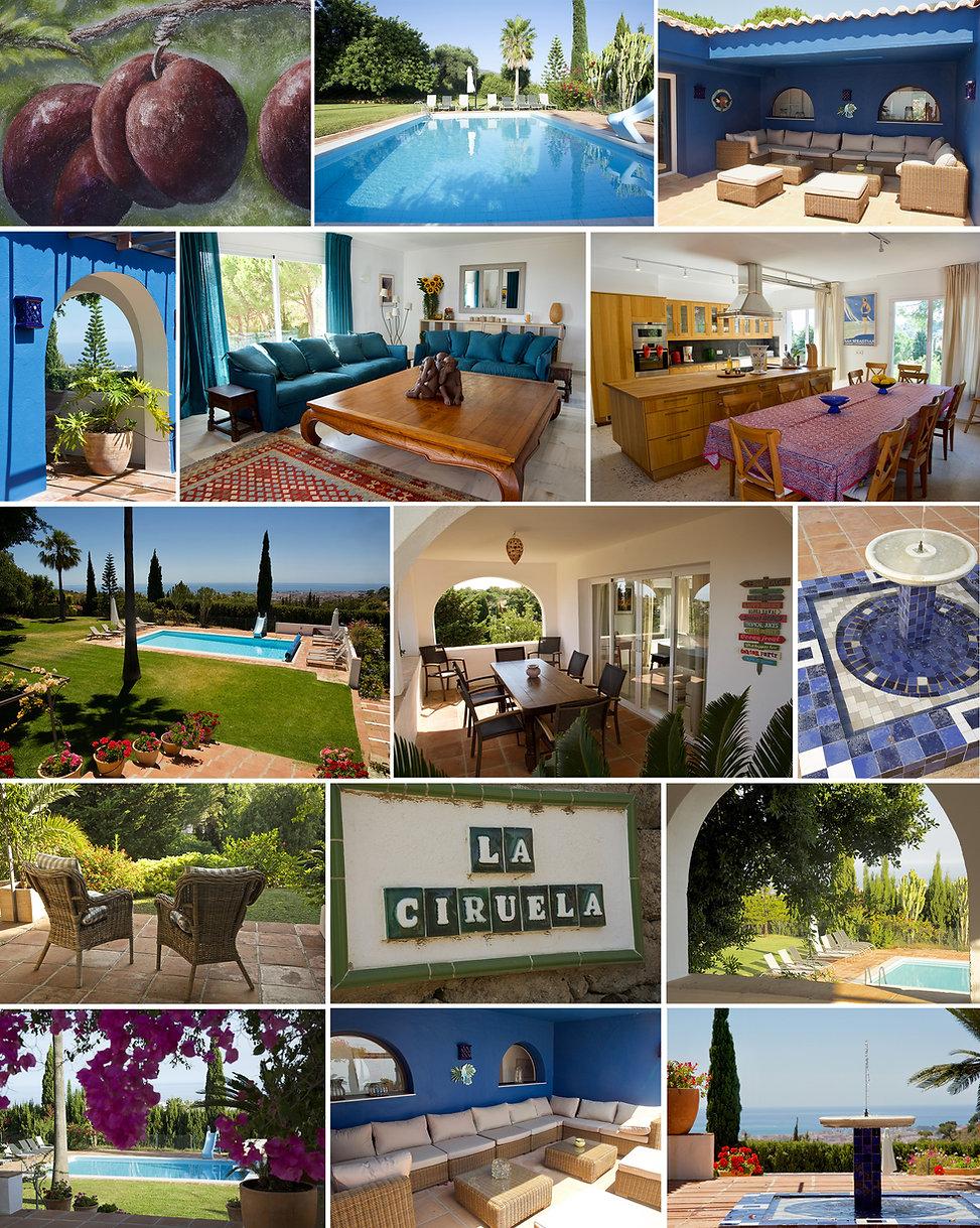 Ciruela-Site-Web-Home-web.jpg