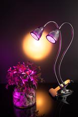 Lamp - Doron-061-Edit.jpg