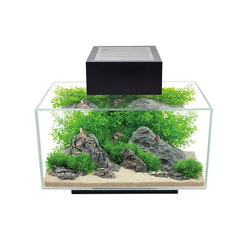 Aquarium-equipe-Fluval-Edge-poissons-Animal-Expert-St-Bruno