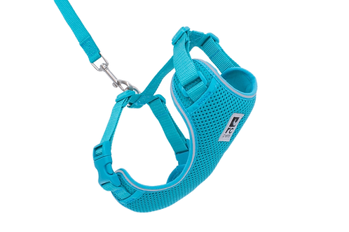 Harnais aventure Kitty bleu turquoise RC Pets pour chat Animal Expert St-Bruno