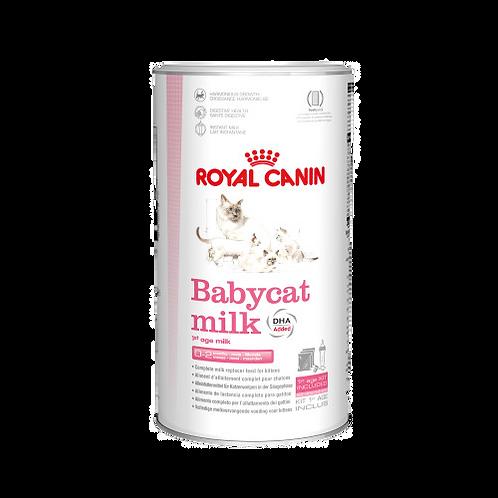 Babycat-milk-Royal-Canin-chat-Animal-Expert-St-Bruno