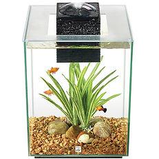 Aquarium équipé Chi Fluval